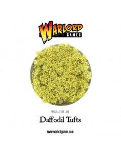 War World Daffodil Tufts