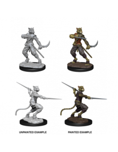 D&D Nolzur´s Miniatures Male Tabaxi Rogue