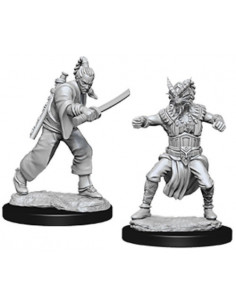 D&D Nolzur´s Miniatures Male Human Monk