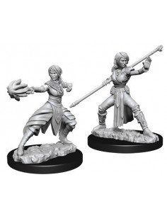D&D Nolzur´s Miniatures Female Half-Elf Monk