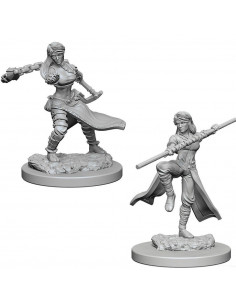 D&D Nolzur´s Miniatures Human Female Monk