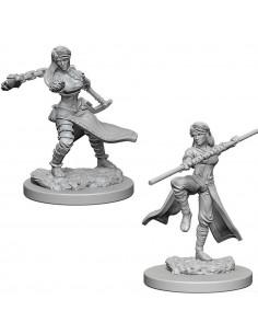 D&D Nolzur´s Miniatures Human Female Monk