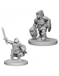 D&D Nolzur´s Miniatures Dwarf Female Paladin