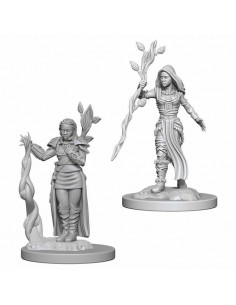 D&D Nolzur´s Miniatures Human Druid