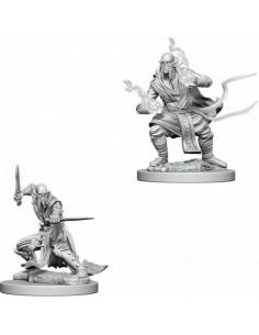 D&D Nolzur´s Miniatures Githzerai