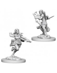 D&D Nolzur´s Miniatures Air Genasi Rogue